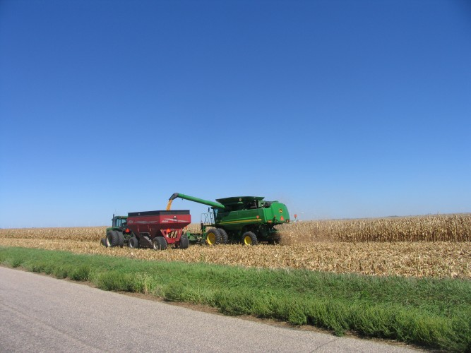 combine dumping corn